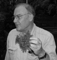 A life with bryophytes