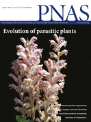 Mechanistic model of evolutionary rate variation en route to a nonphotosynthetic lifestyle in plants